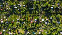 Tiny Plot Gardens, Ecology In ...