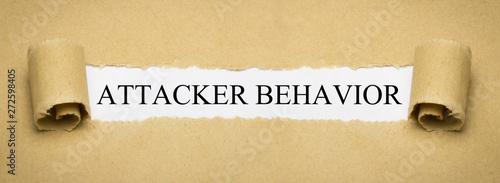 Photo  Attacker Behavior