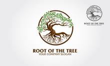 Root Of The Tree Logo Illustra...