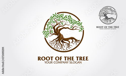 Fotografia Root of the Tree logo illustrating a tree roots, branches are connected in a circular layout