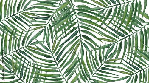 Ingelijste posters Tropische Bladeren Watercolor background with palm leaves.