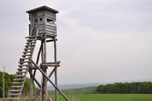 Photo  mirador, tour de guet en bois pour chasseurs, structure en bois, Alsace, France