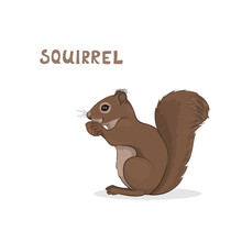 A Cartoon Cute Squirrel, Isolated On A White Background. Animal Alphabet.