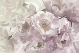 Vintage bouquet of beautiful garden flowers peonies. Pastel colors.
