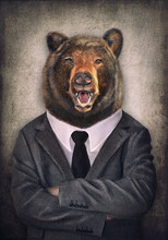 Bear In Clothes. Man With A He...