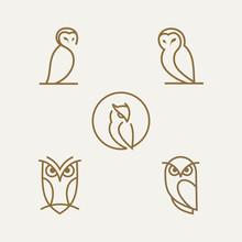 Simple Line Owl Vector Logo De...