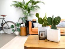Light Modern Living Room With ...