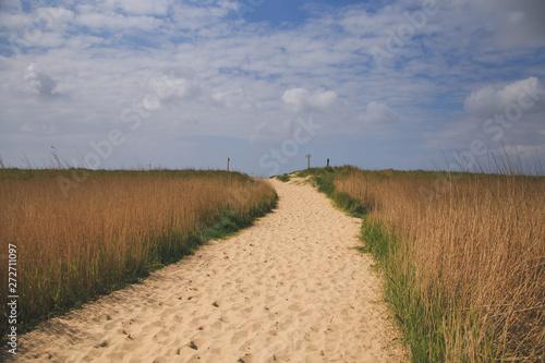 Fototapeta North sea beach obraz na płótnie