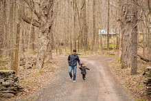 Father And Daughter Holding Hands While Walking On Road Amidst Bare Trees In Forest