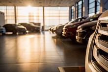 New Cars At Sunlit Dealer Show...
