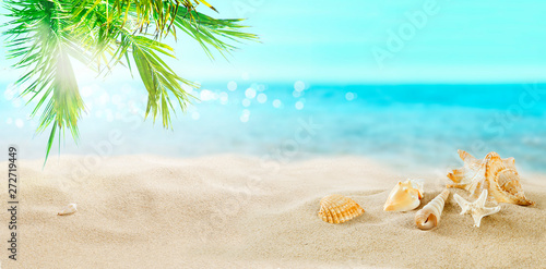 Foto auf Gartenposter Palms Seashells in the sand. Coconut palms on a tropical beach. A great place for a holiday.