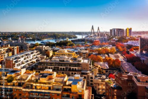 Poster Marron chocolat Aerial View over residential area from Darling Harbour towards Anzac Bridge and Parramatta River in autumn at sunset in Sydney, Australia.