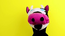Hand Puppet Cow On Yellow Back...