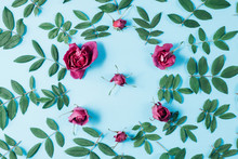 Flowers Composition. Frame Made Of Red Rose Flowers And Green Little Leaves On Blue Background. Many Little Leaves For Decorating Any Post Card Or Celebration Card. Flat Lay, Top View, Copy Space.