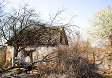 Small House In Abandoned Garden