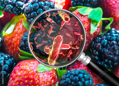 Valokuva Contaminated food concept and tainted meal poisoning symbol resulting in illness