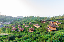 Lee Wine Ruk Thai, Yunnan Chinese Style Clay House Amidst Tea Plantations And Cold Weather In The Mountains Of Mae Hong Son, Thailand