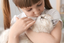 Girl With Cute Fluffy Kitten At Home