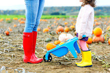 Legs Of Young Woman And Her Little Kid Girl Daugher In Rainboots. Woman In Red Gum Boots, Child In Yellow Shoes. On Pumpkin Field, Outdoors
