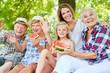 Leinwandbild Motiv Erweiterte Familie macht Ausflug im Sommer