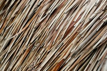 Detail Of A Thatched Roof.