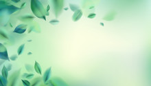 Nature Abstract Background With Spring Green Leaves Vector Illustration