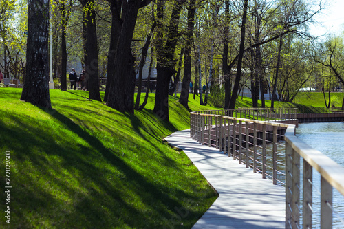 beautiful park in summer Canvas-taulu