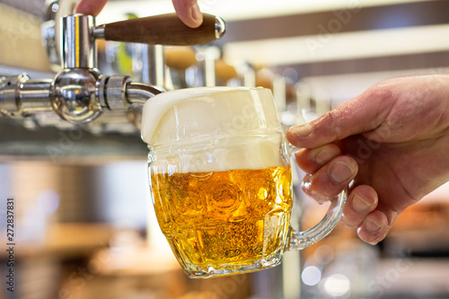 Fotografie, Obraz A man pouring draft lager beer into a dimpled glass mug  in a modern pub
