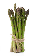 Green Asparagus Sprouts Isolated