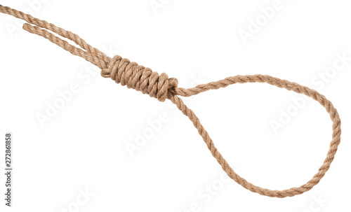 Fotografie, Obraz  hangman's knot tied on thick jute rope isolated