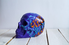 Skull On The White Wall And Wo...