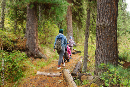 Fotomural  family hiking in forest