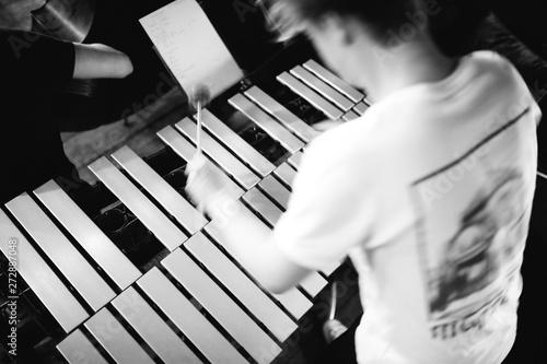 Vibraphone player - 272887048
