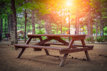 Wooden Picnic Table And Pine C...