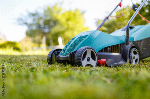Papel de parede Electric lawn mower cuts moss and green grass