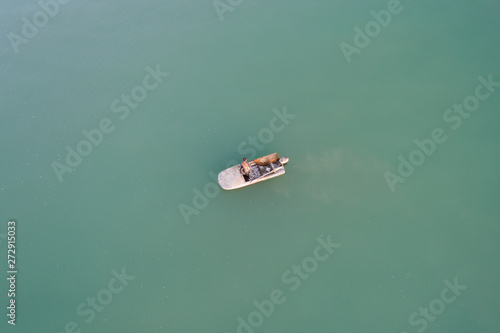 boat on the lake, view from above #272915033