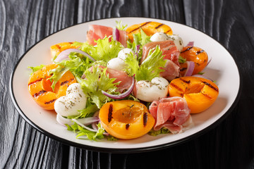Easy recipe for summer salad with mozzarella cheese, prosciutto, grilled apricots, red onions and leaf lettuce close-up. horizontal