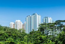 Singapore HDB Residential Building In Green Forest Skyline