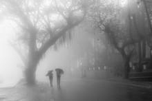 Kids Going To School In Rain