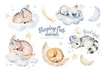 Cute Dreaming Cartoon Animal Deer, Bear Hand Drawn Watercolor Illustration. Sleeping Rabbit Charecher Kids Nursery Wear Fashion Design, Baby Cartoon And Fox