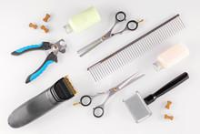 Grooming Equipment For Animals And Treats Like Bones, Flat Lay