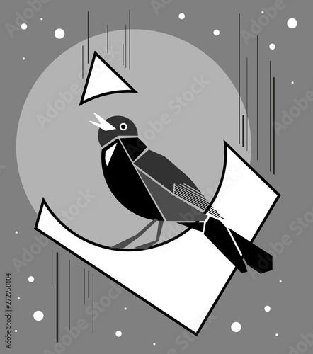 Photo Singing mockingbird at night