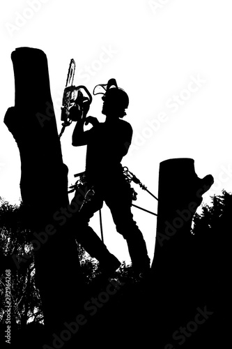 Photo Vector silhouette of an Arborist at work with a chainsaw up a tree