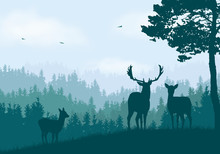 Realistic Illustration Of Mountain Landscape With Coniferous Forest Under Clear Blue And Green Sky With White Clouds. Deer, Doe And Little Deer Standing And Looking Into Valley, Vector