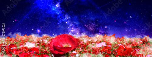 Slika na platnu 赤いポピーの花畑と天の川の見える夜空