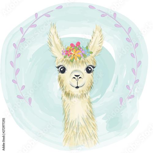 Happy cute little llama smiling © Claudia Balasoiu