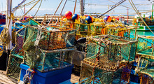 Crayfish Nets And Traps On A S...