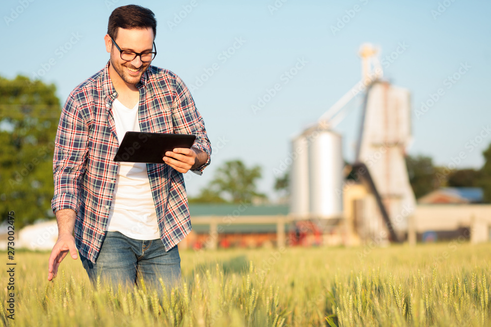 Fototapety, obrazy: Happy young farmer or agronomist inspecting wheat plants in a field before the harvest. Working on a tablet. Grain silo in the background. Organic farming and healthy food production