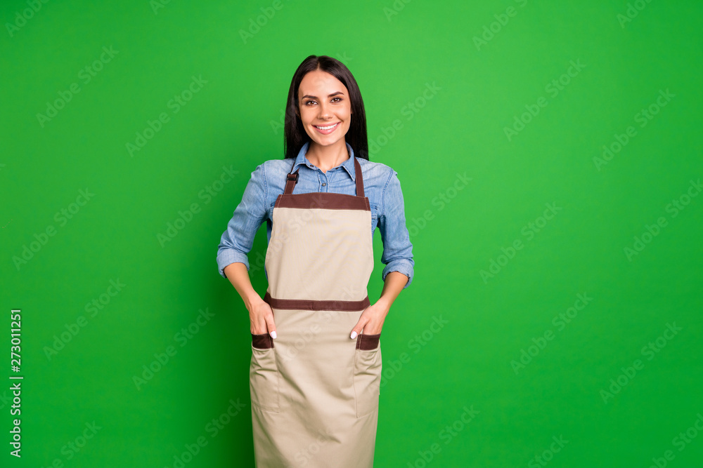 Fototapeta Close up photo beautiful she her lady hands arms pockets assure customers buy buyers best service organization self-confident wear jeans denim shirt covered work apron isolated black grey background