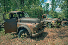 Roadside Rusted Old Ford Trucks And Cars In Florida